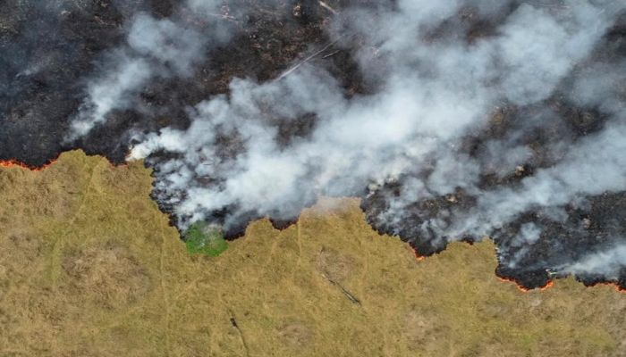 Smoke rises over a deforested plot of the Amazon jungle in Porto Velho, Rondonia State, Brazil, August 24.  Photo: Collected