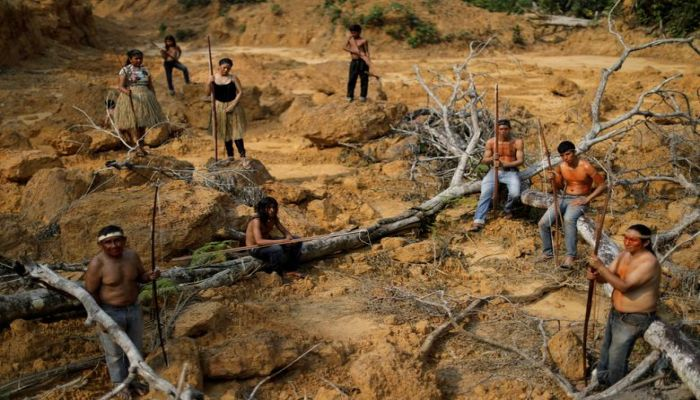 Indigenous people from the Mura tribe show a deforested area in unmarked indigenous lands inside the Amazon rainforest near Humaita, Amazonas State, Brazil August 20. Photo: Collected