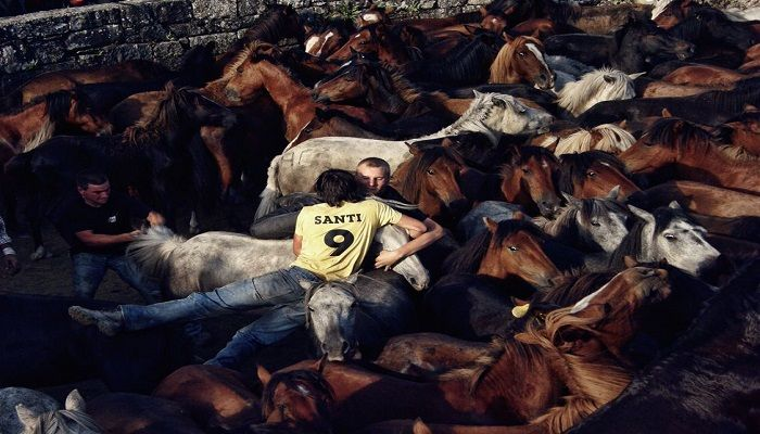 In the Photojournalist category, David López Fernández took this photograph of A Rapa das Bestas, a traditional celebration in the village of Sabucedo, in Galicia, Spain.