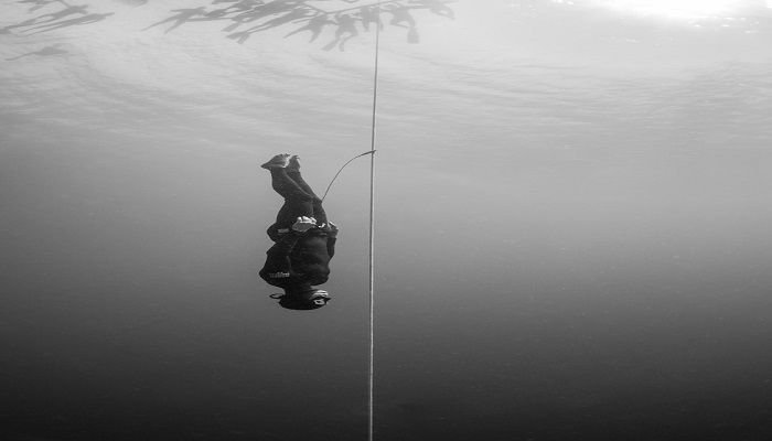 Submitted under the Great Outdoors category, Kohei Ueno's picture shows a freediver at the Bali 2018 AAS Freediving Depth Championships in Indonesia.