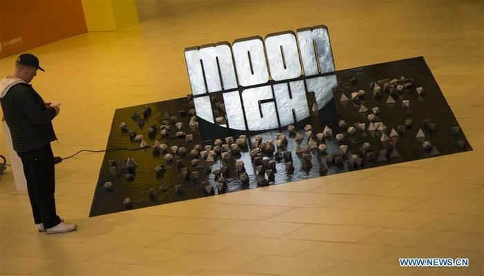 "A visitor views the artwork ""Moon Light"" during the 2019 Art Toronto in Toronto, Canada, on Oct. 26, 2019. Presenting works by over 100 galleries from across Canada and around the world, this annual three-day fair was held here from Friday to Sunday to draw tens of thousands of art collectors, professionals, and enthusiasts. Photo: Xinhua"