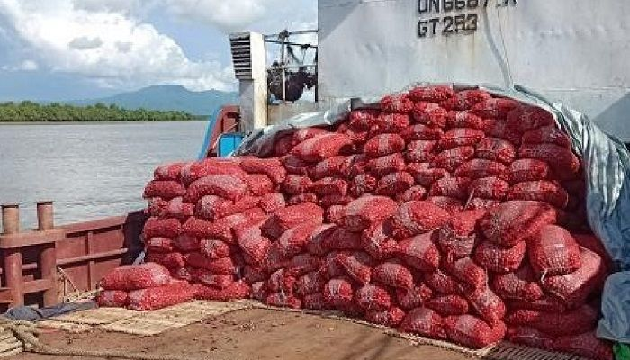 Onion import from Myanmar on the rise