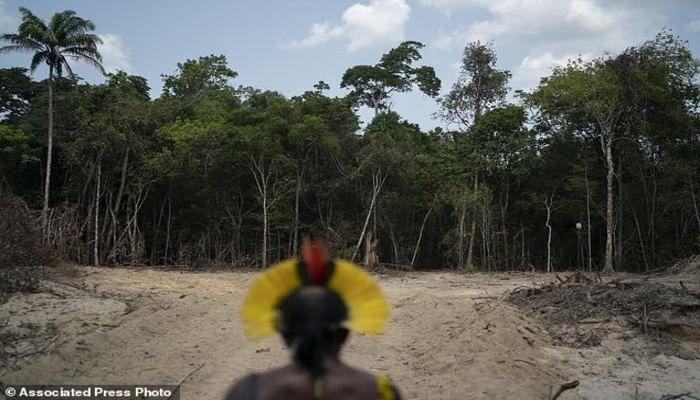 Brazil says Amazon deforestation is worst since 2008