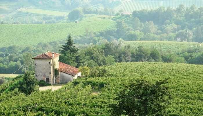 Le Colline del Prosecco di Conegliano e Valdobbiadene, Italy: The new site includes some of the wine-growing landscape of the Prosecco wine production region as well as villages, forests and farmland.
