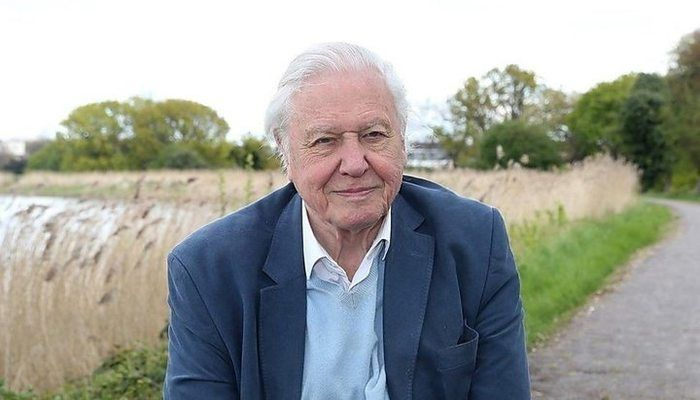 Attenborough Warns of Climate 'Crisis Moment'