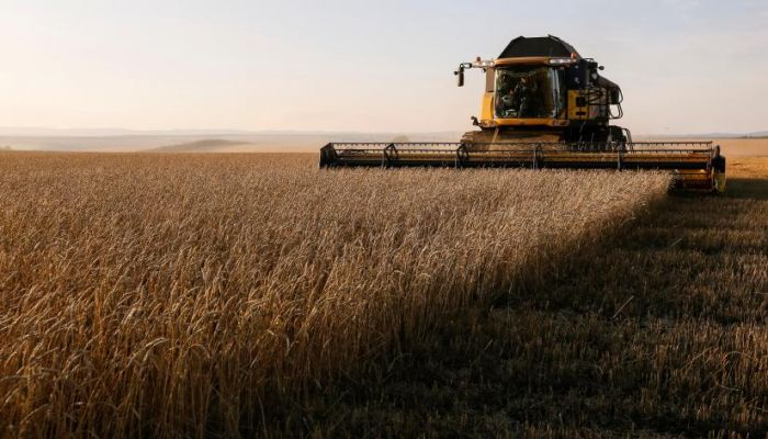 Bangladesh to Buy Ukrainian Wheat If Russian Grain Unavailable