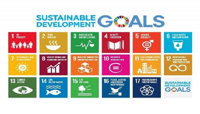 'Innovative Financing Must to Achieve SDGs in Time'