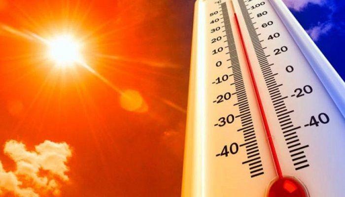 Mild Heatwave May Continue: Met Office