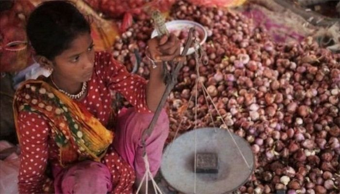 India Bans Onion Export: What Is Govt Doing to Handle Crisis?