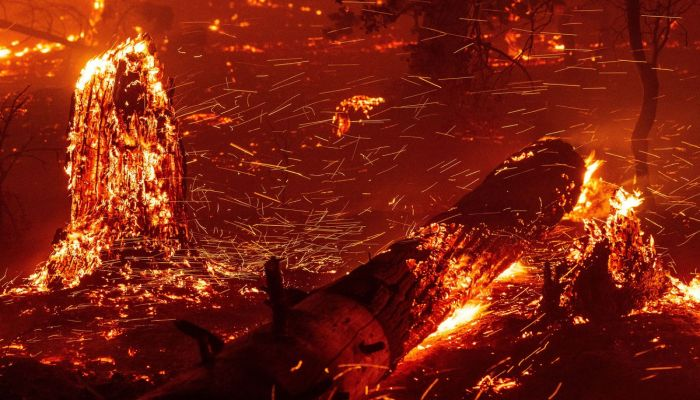 Embers fly off burning timber as flames push toward homes during the Creek Fire in the Cascadel Woods area of unincorporated Madera County, California, on September 7, 2020.
