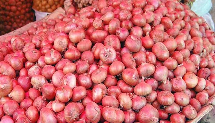 TCB to Start Selling Onion Soon