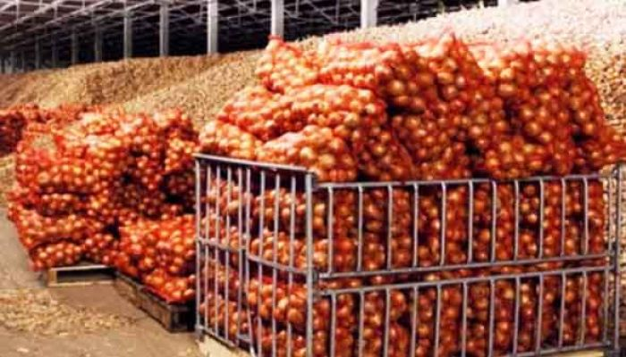 First Shipment of Myanmar Onion Unloaded
