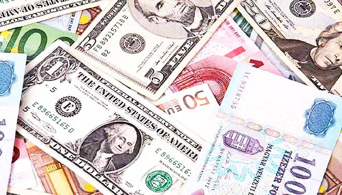 Robust Remittance Inflow Continues Despite Pandemic
