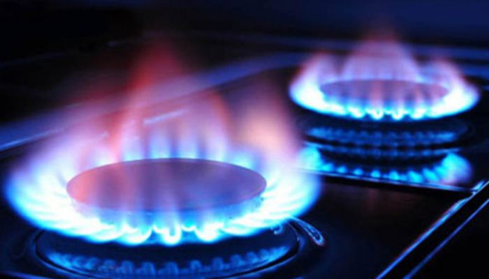 Experts Upset at Govt's Growing Dependence on Gas Import
