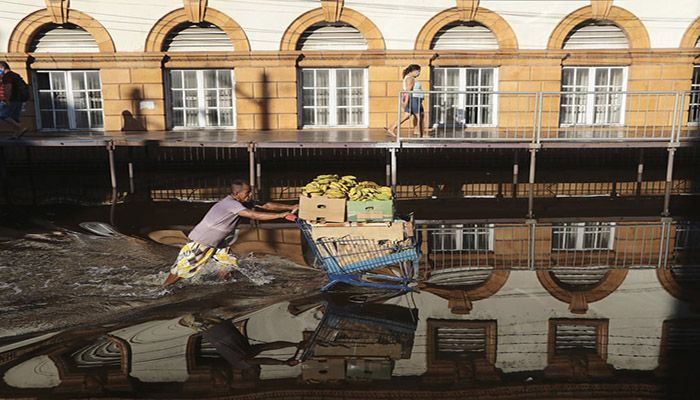 (Manaus, Brazil) A man pushes a shopping cart loaded with bananas on a street flooded by the Negro River in downtown Manaus. Rivers around Brazil's biggest city in the Amazon rain forest have swelled to levels unseen in over a century of record-keeping. || Photograph: Edmar Barros/AP