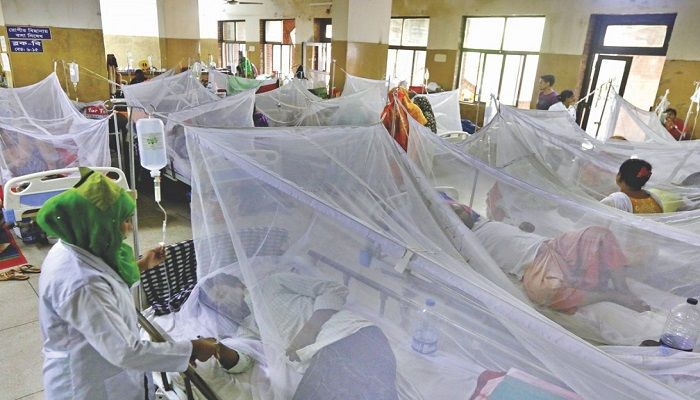 Increased Number of Dengue Cases Reported through July