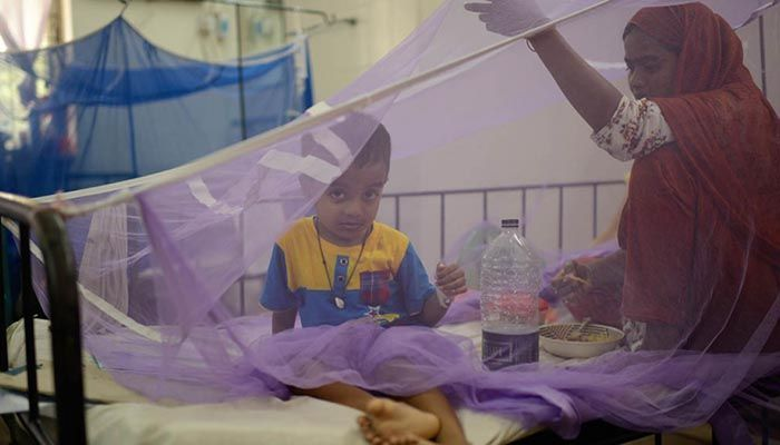 319 More Hospitalized with Dengue in Bangladesh