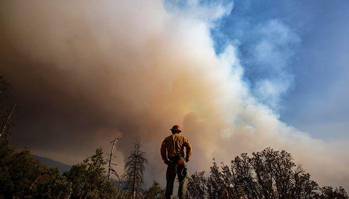 (Sierra Nevada, California, US) Sierra Cobras fire crew member Gustavo Cisneros keeps an eye on a hillside as flames roll into the forest || Photograph: Brian van der Brug/Los Angeles Times/Rex/Shutterstock