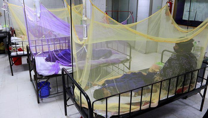 Daily Dengue Cases Record High 343 in Bangladesh