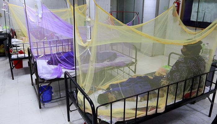 265 More Dengue Patients Admitted to Hospitals in 24Hrs