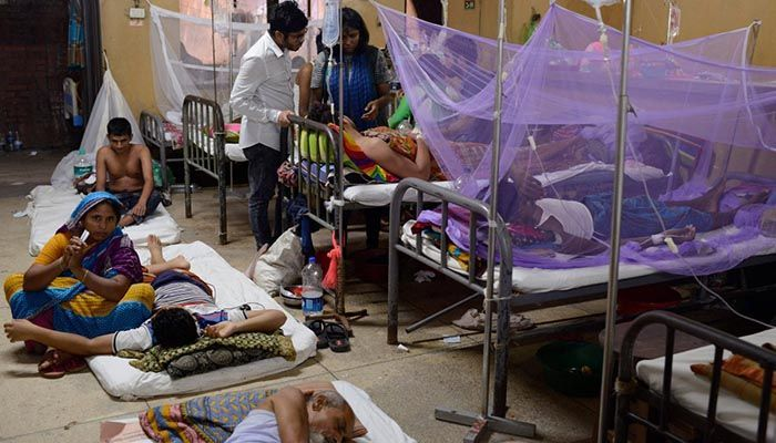 288 Dengue Patients Hospitalized in Last 24 Hrs, 3 More Die