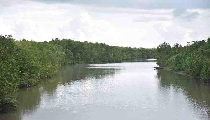 44 Held for Illegal Fishing in Sundarbans