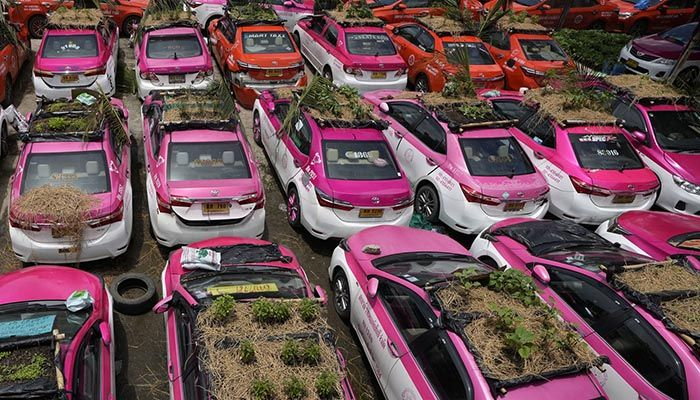Idle Thai Taxis Go Green with Gardens on Car Roofs